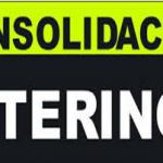 LA CONSOLIDACIÓN DE EMPLEO INTERINO, Una Vision Juridica (otra más)